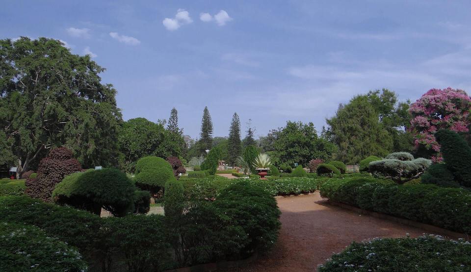 a garden in Bangalore