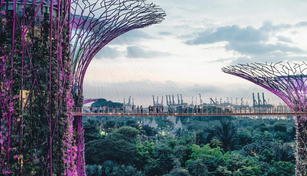 tourist spot in Singapore with forest